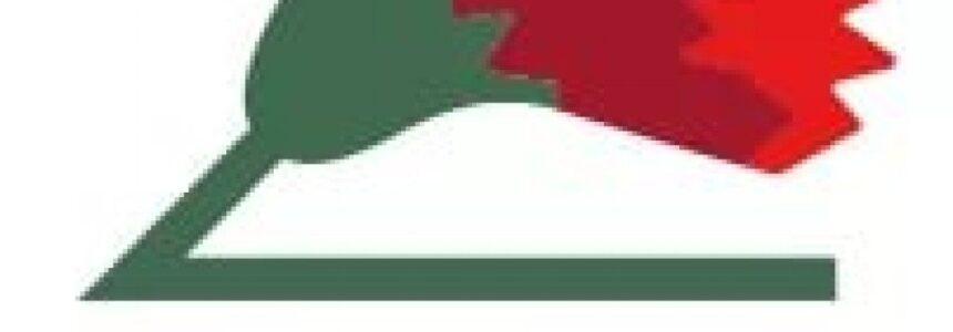 Стартовала Всероссийская благотворительная акция «Красная гвоздика»